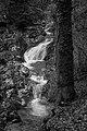 County Wicklow - Glendalough - 20190219015446.jpg