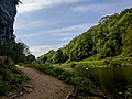Creswell Gorge, Creswell Craggs, Notts (124).jpg
