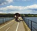 Crossing the Bandon River - geograph.org.uk - 1889163.jpg