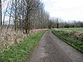 Cycle path - geograph.org.uk - 1196111.jpg