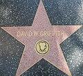 DW Griffith star HWF.JPG