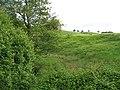 Damp land, Sign - geograph.org.uk - 839044.jpg