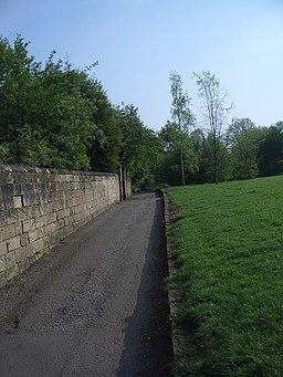 Darley Slade, prehistoric trackway, looking South - geograph.org.uk - 417031