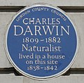 Darwin Gower.jpg