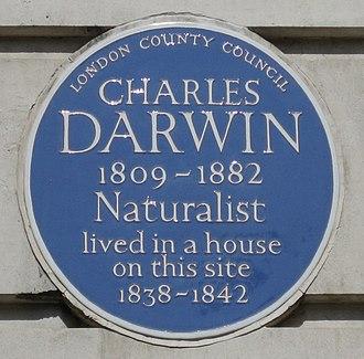 Gower Street, London - Image: Darwin Gower