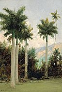 David Howard Hitchcock - Royal Palms at Moanalua, near Honolulu.jpg