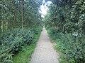 Delft - 2011 - panoramio (412).jpg