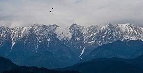 Dharamsala-douladhar-range.jpg