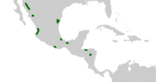 Dioon Distribution.png