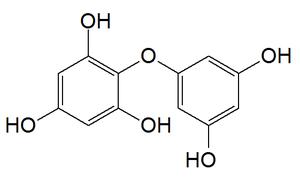 Diphlorethol - Image: Diphlorethol