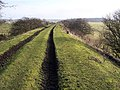 Disused Railway east of Scotsgap, Northumberland - geograph.org.uk - 126013.jpg