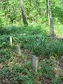 Dixon Cemetery Helena AR 008.jpg