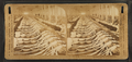 Drawing frames, White Oak Cotton Mills. Greensboro, N.C, by H.C. White Co..png