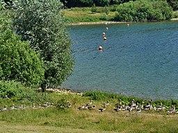 Draycote Water - panoramio (5)