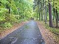 Droga przez las do Łańska - panoramio.jpg