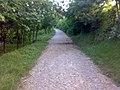 Drumul Vinului -End Of Road - panoramio.jpg