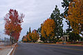 Duarte Road near Arcadia High School (8311862148).jpg
