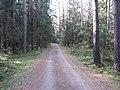Dusetų sen., Lithuania - panoramio (127).jpg