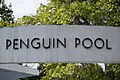 EH1225665 Penguin Pool, London Zoo 01.jpg