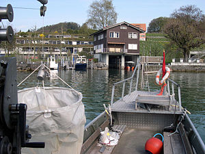 Swiss Federal Institute of Aquatic Science and Technology - The Center for Ecology, Evolution and Biogeochemistry (CEEB) as well as the Swiss Fisheries Advisory Office both operate in Kastanienbaum.