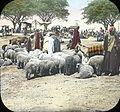 Egypt, Market at Kasr-en-Nil (1).jpg