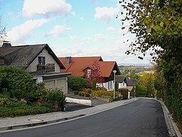 Eichenstraße in Oerlinghausen
