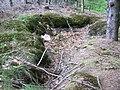 Eingestürzter Hohlraum oberhalb des Steinbruches - panoramio.jpg