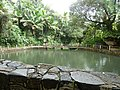 El Yunque Baño Grande 2013.jpg
