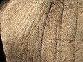 Elephant Skin.jpg