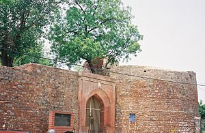 Entry Gate to Salimgarh Fort from the Yamuna River side