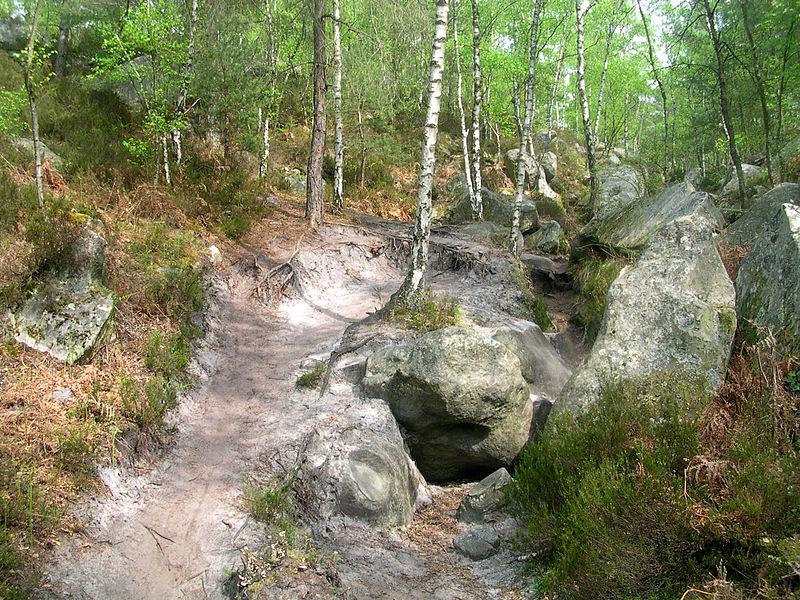 Fichier:Erosion fontainebleau.jpg