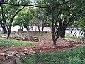 Esplanada Monte Castelo passando por uma reforma Março 2012. - panoramio.jpg