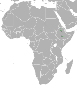Ethiopian Wolf area.png