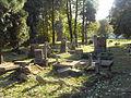 Evangelical Cemetery on Bystrzańska street in Bielsko-Biała (24).JPG