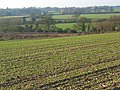 Farmland, Mortimer - geograph.org.uk - 635081.jpg