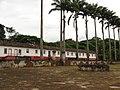 Fazenda Pinhal - São Carlos - SP 4 - panoramio.jpg