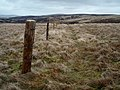 Fence, Calfhope Hill - geograph.org.uk - 726822.jpg