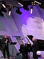 Festivalsommer 2015 Karlsruhe - panoramio (6).jpg