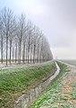 Filare - Sant'Agata Bolognese (BO) Italia - 16 Dicembre 2010 - panoramio.jpg