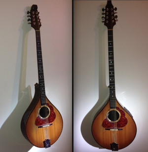 Irish bouzouki - Image: First Irish Bouzouki Lunny Abnett