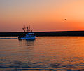 Fishing Boat Returns to Harbor (3518046288).jpg