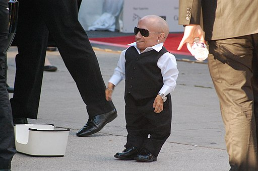 Flickr - csztova - Verne Troyer - TIFF 09'