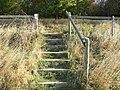Footpath Steps - geograph.org.uk - 2636708.jpg