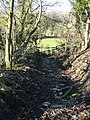 Footpath and Hollow Way - geograph.org.uk - 349664.jpg