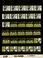 Ford B1369 NLGRF photo contact sheet (1976-09-06)(Gerald Ford Library).jpg