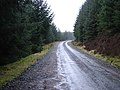 Forestry track approaching Bryn Du on a drizzly day - geograph.org.uk - 1107396.jpg