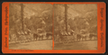 Foss at the Geysers, from Robert N. Dennis collection of stereoscopic views 2.png