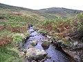Fosse Gill looking towards Foulshaw Crags - geograph.org.uk - 564022.jpg