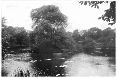 Fotg cocoa d130 fishing pool bournville.png