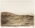 Fotografi på berget Hermon - Hallwylska museet - 104255.tif